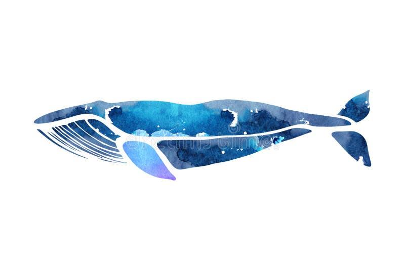 baleine bleue Musculus de Balaenoptera Baleine d'isolement sur un fond clair Logo pour votre conception illustration stock