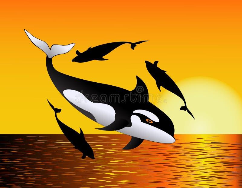 Baleine dans l'océan illustration libre de droits