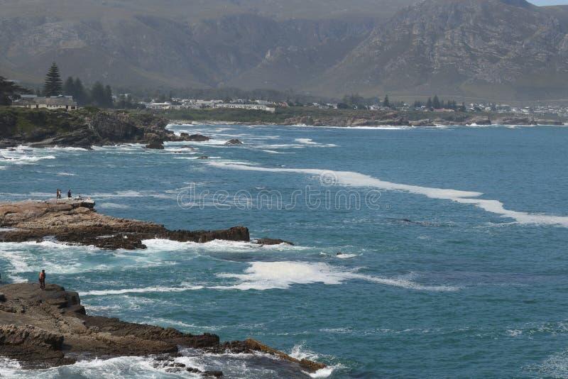 Baleines de observation chez Hermanus images libres de droits