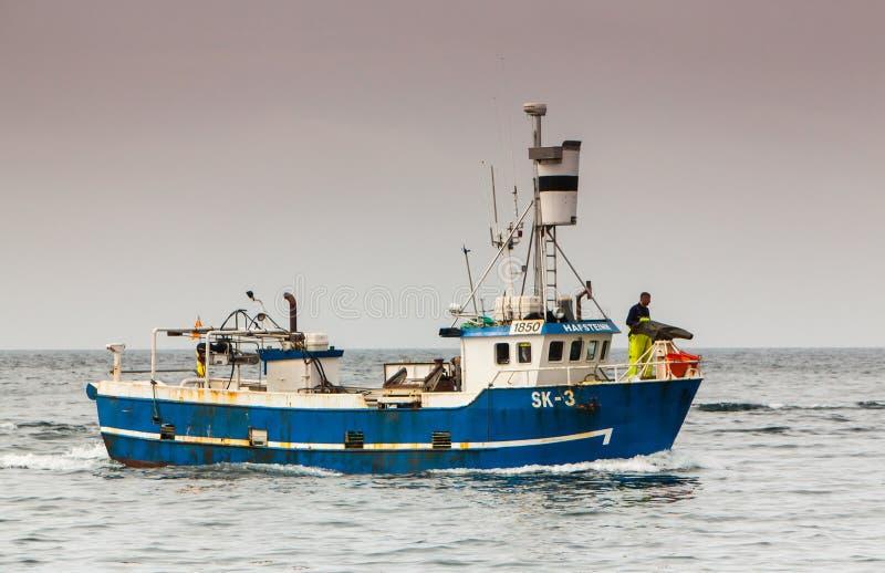 Baleinier islandais photo stock