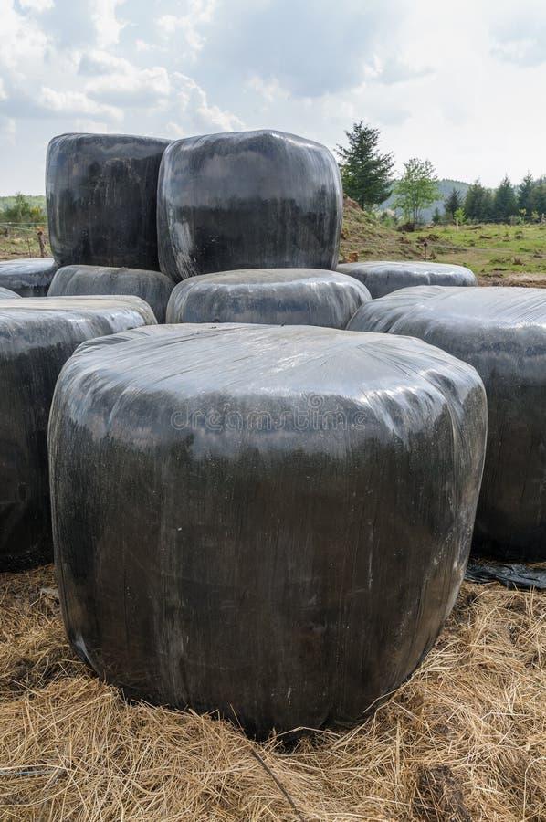 Balen van hooi in zwart plastiek worden ingepakt dat stock foto's