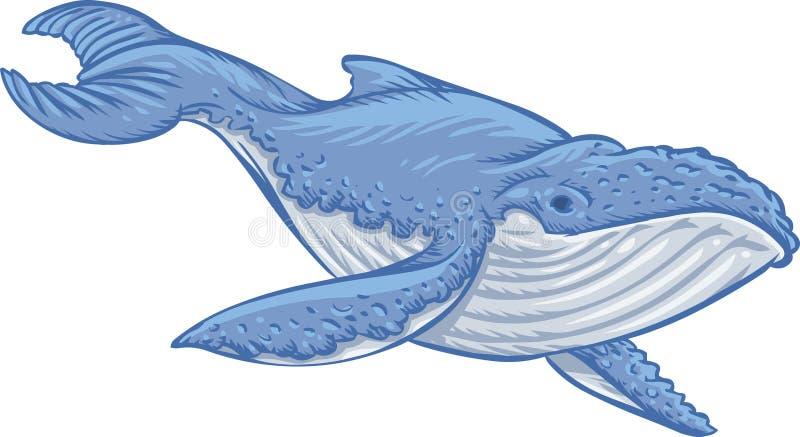 Balena blu royalty illustrazione gratis