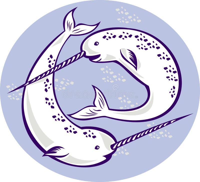 Balena dell'unicorno di monoceros del Monodon di Narwhal illustrazione di stock