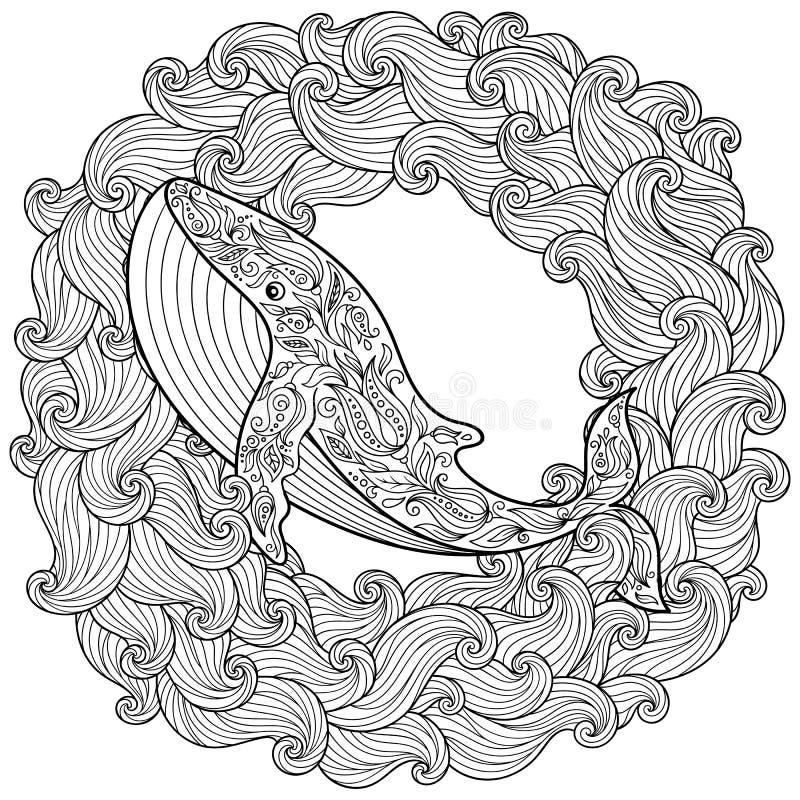 Balena disegnata a mano nelle onde per l'anti pagina di coloritura di sforzo illustrazione vettoriale