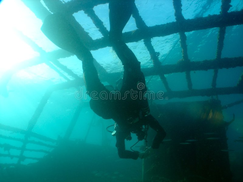 Balena - diver stock photo