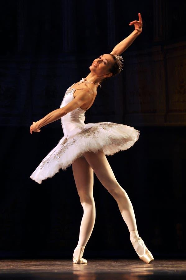 Download Balerina. obraz editorial. Obraz złożonej z grace, klasyczny - 28956875