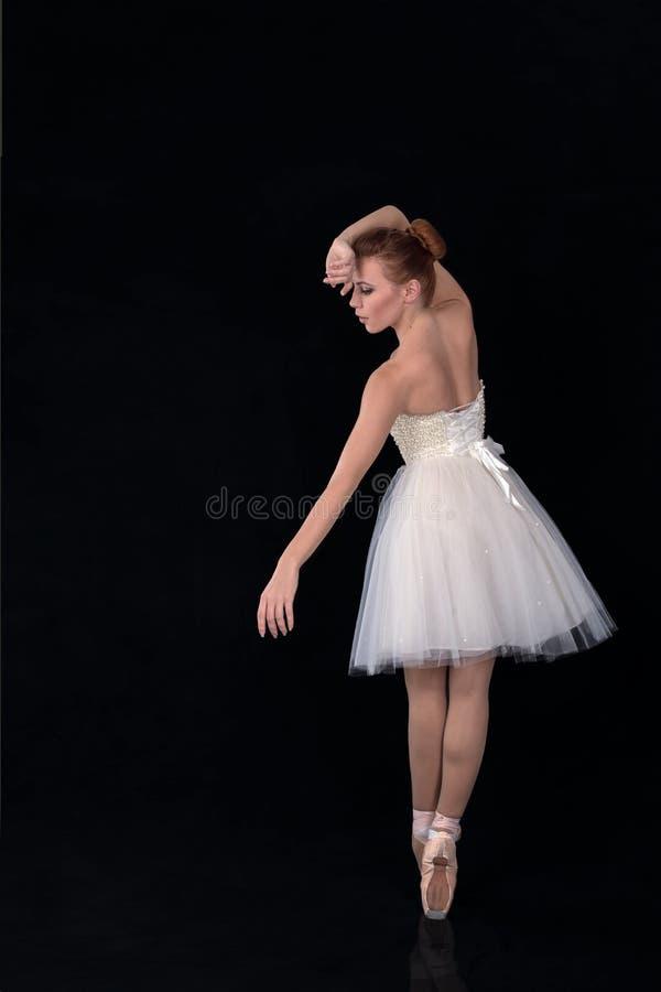 Balerina w pointes i sukni tanczy na białym backgroun zdjęcie royalty free