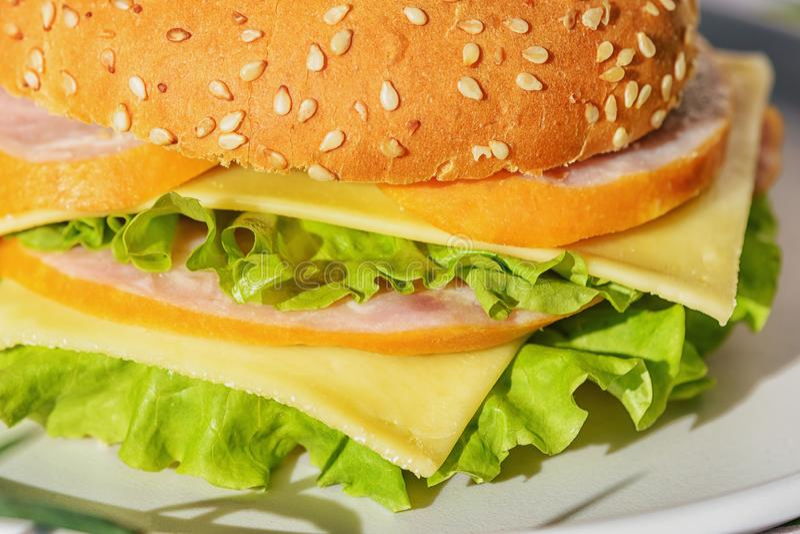 Baleron i Serowa kanapka z Świeżym Sałatkowym liściem fotografia royalty free