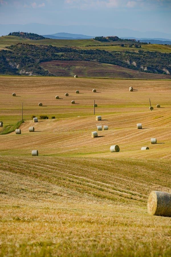 Bales de paja en un campo cosechado, Toscana, Italia, Europa fotos de archivo