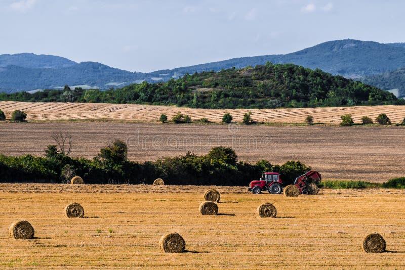 bales hay делать трактор стоковое фото rf