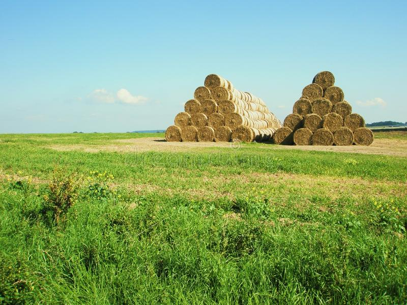 Download Bales of hay stock image. Image of background, dried - 16020029