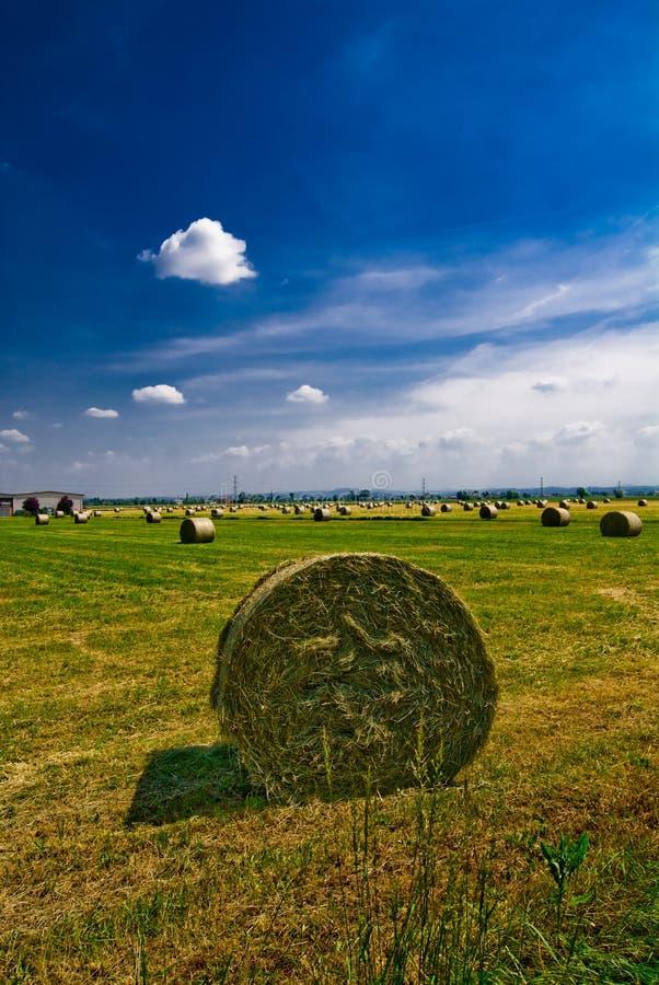 Download Bales Of Hay Stock Photos - Image: 5356273