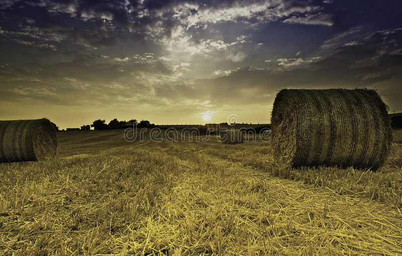 Bales of hay royalty free stock photos