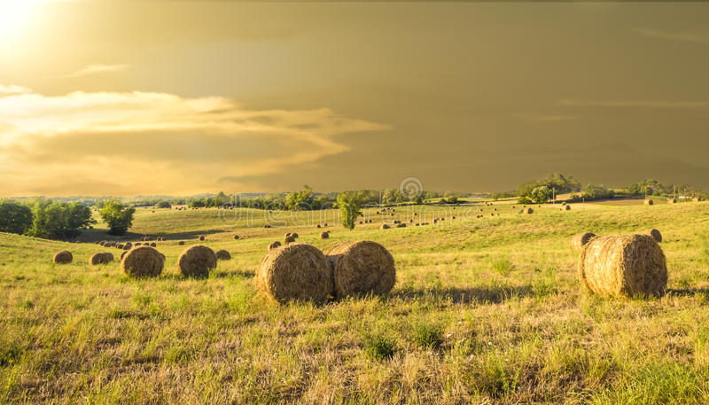 Download Bales Of Hay On A Farm At Sunset Stock Photo - Image: 34258390