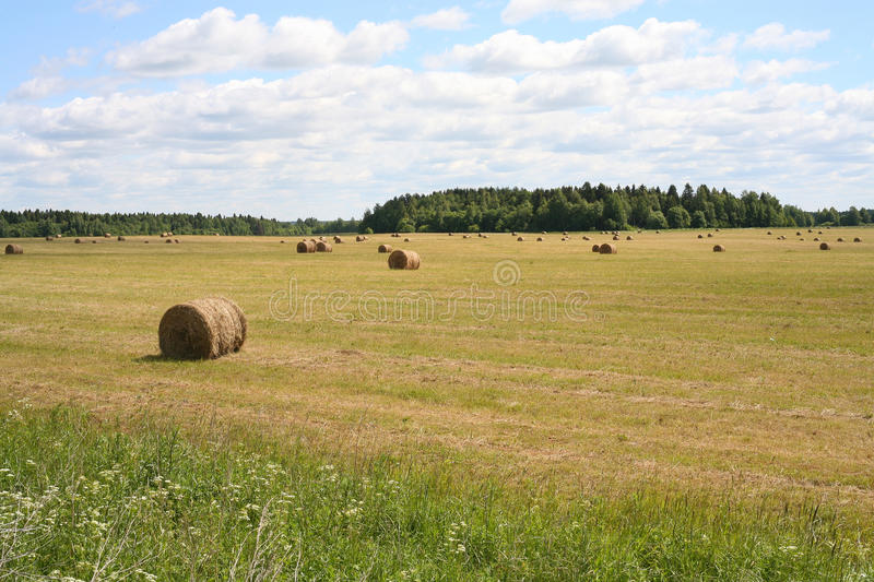 The bales of hay stock image