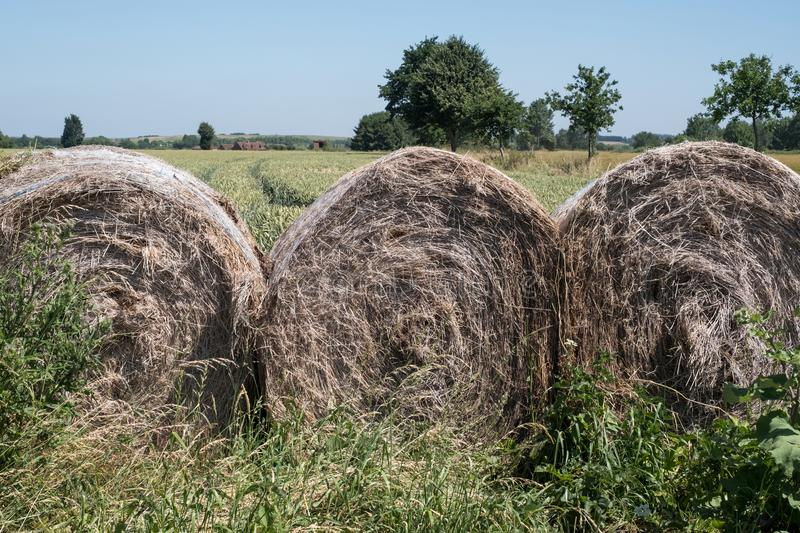 Bales of hay in the foreground. Field of wheat in the background, with trees on the horizon and a clear blue sky. Photographed in mid summer in the Cotswolds royalty free stock photography