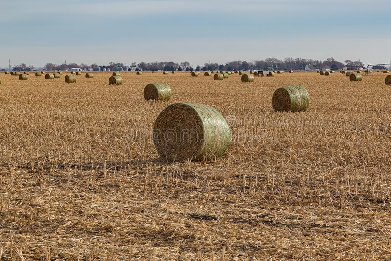 Bales of hay. Post harvest corn field. Storage facility. Irrigation system. broken corn stalks. farmland. farm in Nebraska stock photos