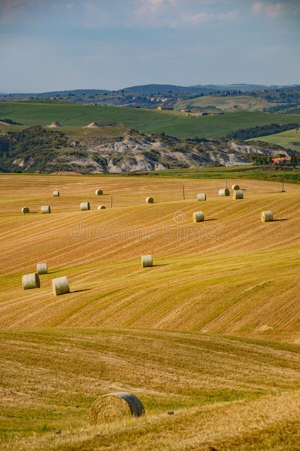 Bales of straw on a harvested field, Tuscany, Italy, Europe royalty free stock photos