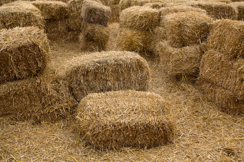 Bales of yellow hay are lying in the courtyard. Backgrounds and textures stock photography