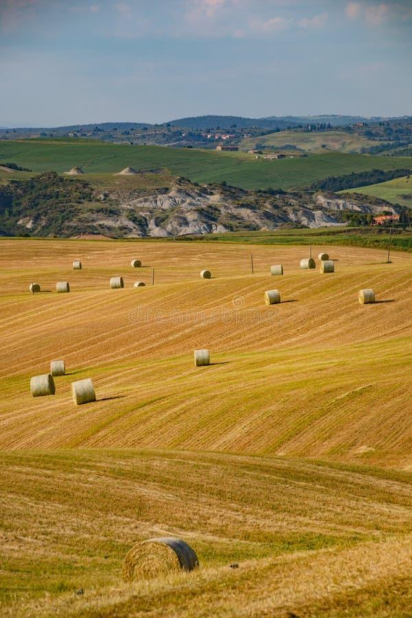 Bales ze słomy na zbożu, Toskania, Włochy, Europa zdjęcia royalty free