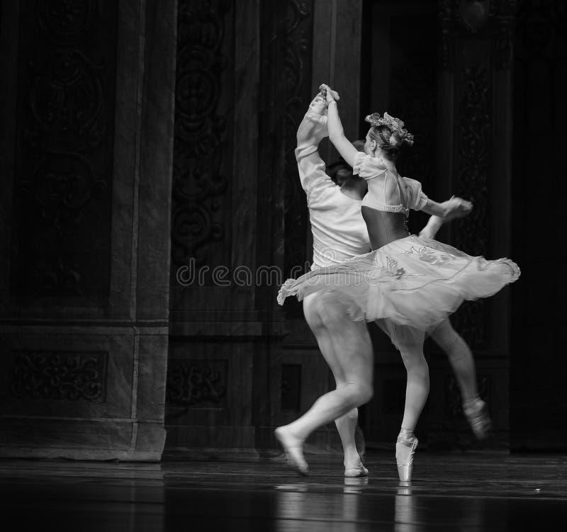 Baletnicza spódnica fotografia royalty free