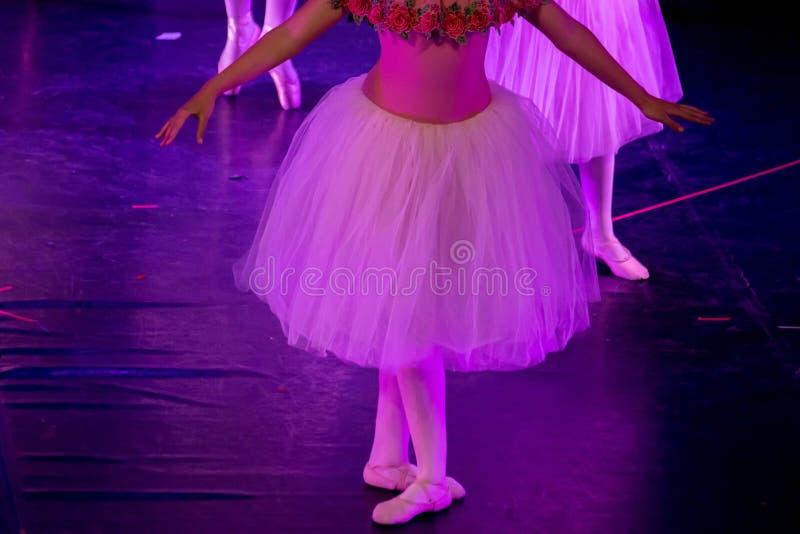 Balettdansörer under purpurfärgat ljus med klassiska klänningar som utför en balett på suddighetsbakgrund royaltyfri foto