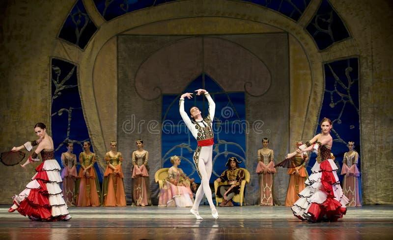 balettlaken utför den kungliga ryssswanen royaltyfri fotografi