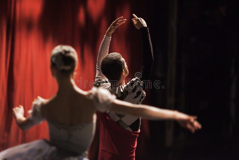 Balettsvan sjö Ballerina i rörelsen royaltyfria bilder