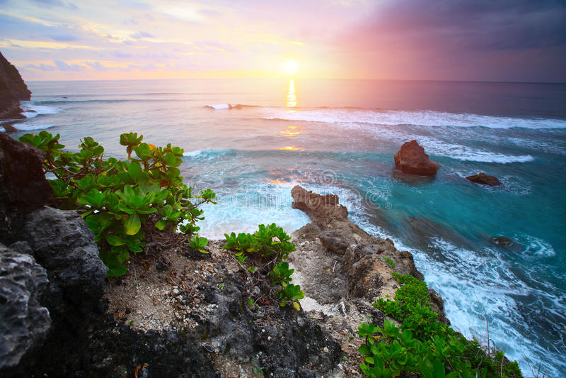 Bali royaltyfria bilder