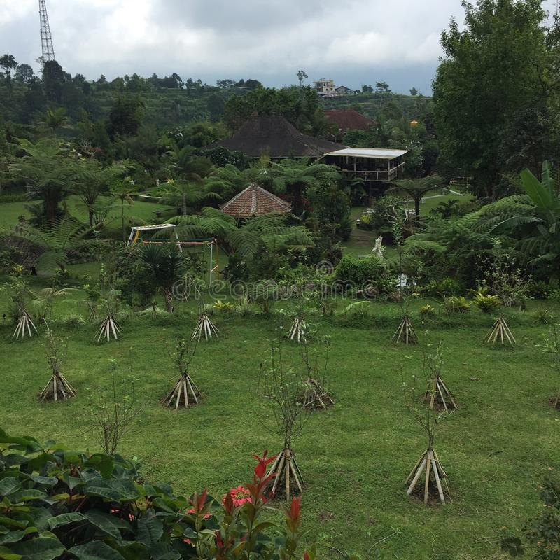 Bali Bedugul stock afbeelding