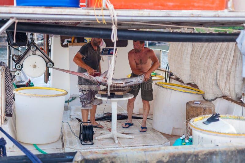 Bali, Eiland Kreta, Griekenland, - 30 Juni, 2016: De vissers wegen een grote vis sawfish na succesvolle vissenvangst op de visser stock fotografie