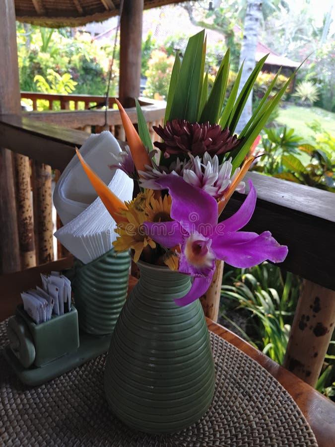Bali-Feiertag für die Blumenliebhaber stockbild