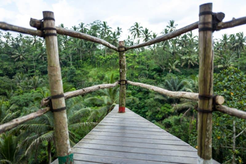 Bali Huśtawkowy teren w Indonezja obrazy stock