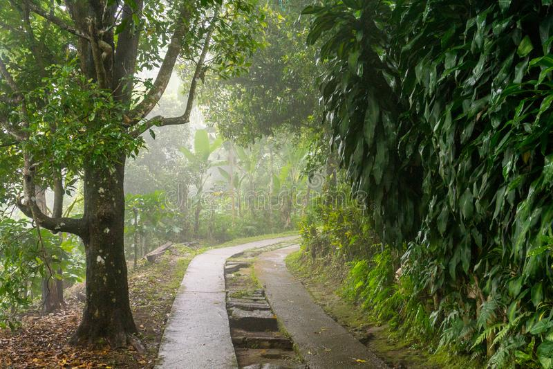 Bali, Indonesië royalty-vrije stock afbeeldingen
