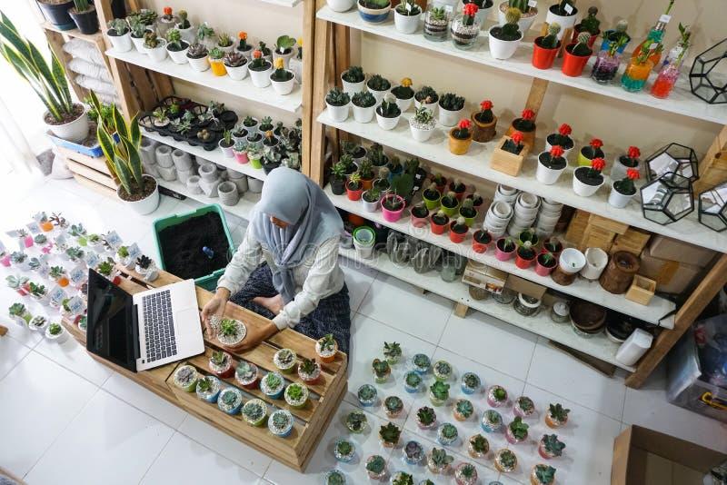 BALI/INDONESIA- 25 ΜΑΐΟΥ 2019: Μια μουσουλμανική επιχειρηματίας πωλεί τις succulent εγκαταστάσεις στο διαδίκτυο Διοργανώνει ένα κ στοκ φωτογραφία