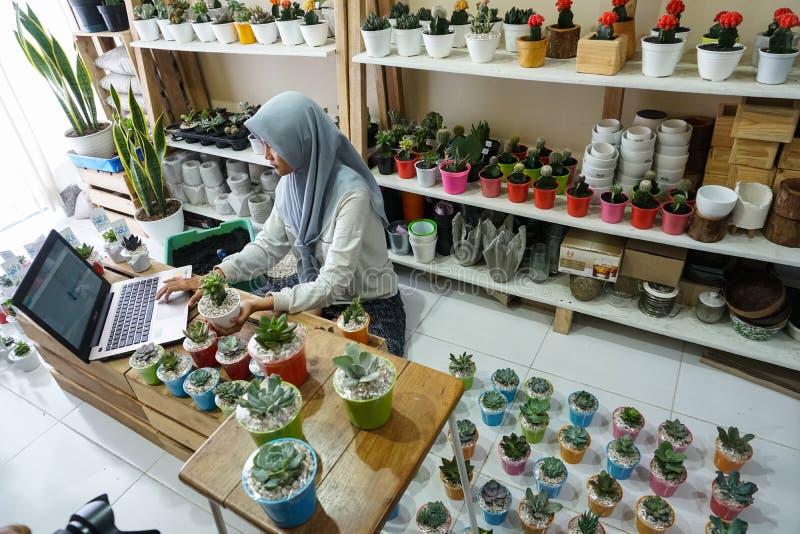 BALI/INDONESIA- 25 ΜΑΐΟΥ 2019: Μια μουσουλμανική επιχειρηματίας πωλεί τις succulent εγκαταστάσεις στο διαδίκτυο Διοργανώνει ένα κ στοκ εικόνες με δικαίωμα ελεύθερης χρήσης