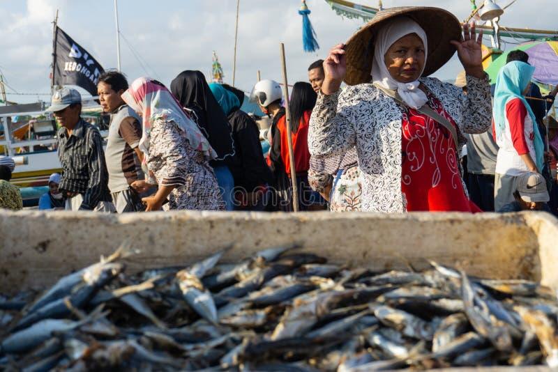 BALI/INDONESIA- 15-ОЕ МАЯ 2019: Помещают некоторые свежие рыб уловленные рыболовами внутри таза после этого высушенного под после стоковые фото