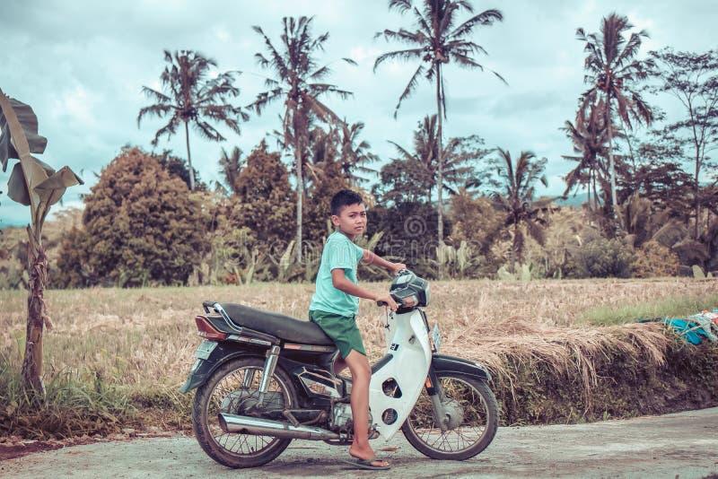 BALI, INDONESIA - 5 DICEMBRE 2017: Piccolo ragazzo di balinese sulla motocicletta vicino al giacimento del riso, isola di Bali immagini stock