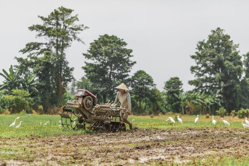 Bali/Indonesia - 03 05 2018: l'uomo ara il campo con grande un motore-blocco fotografia stock