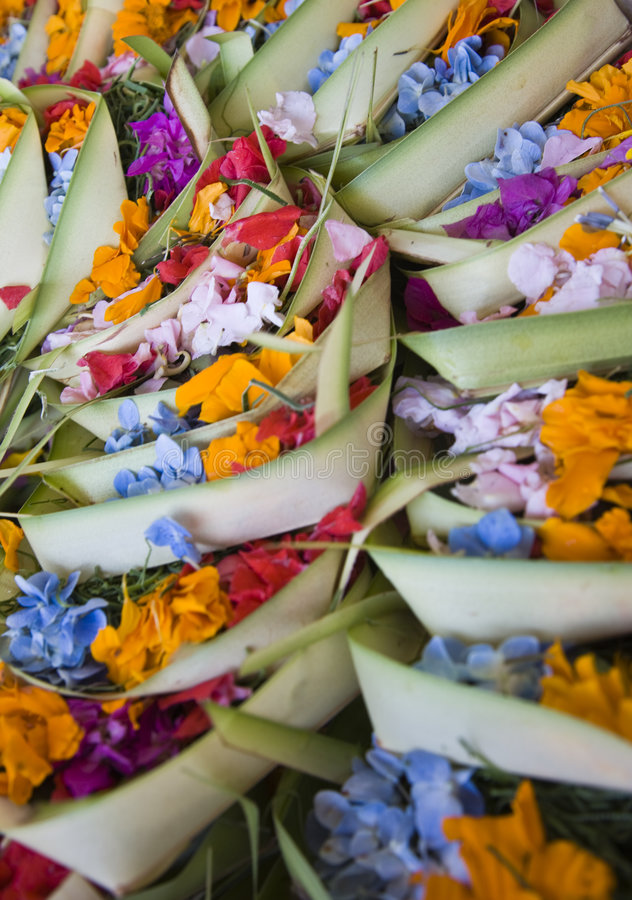 Bali offering. Canang, a Balinese offering to the Gods stock photography