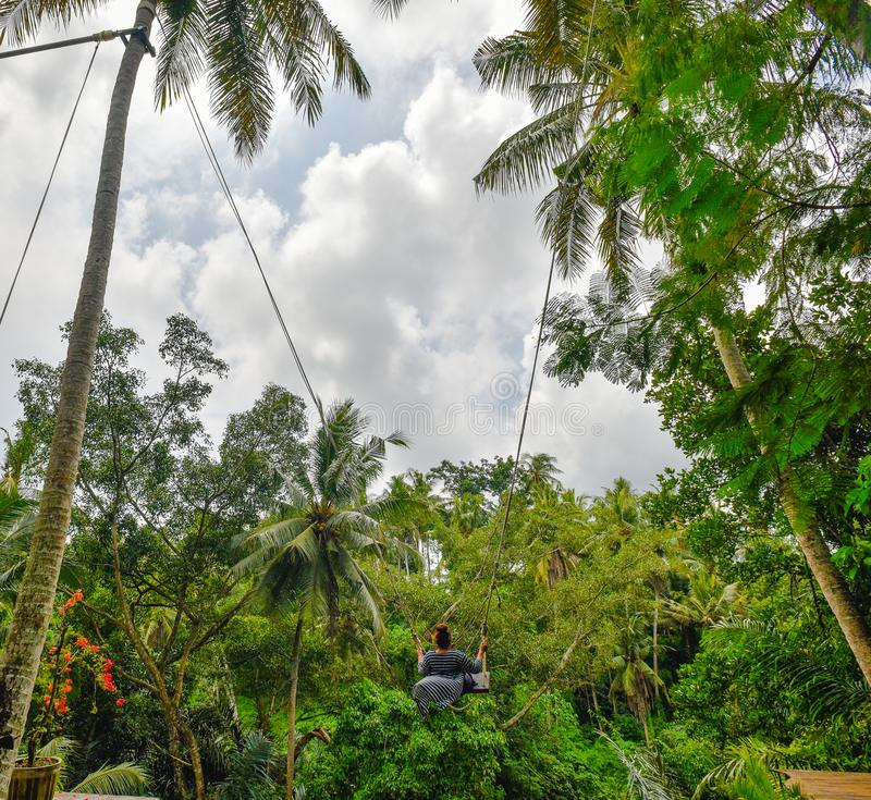 Bali swing and a ginger girl on a sunny day in Ubud. Ginger girl in black and white dress swinging on a palm tree swing in Bali and enjoying this amazing fun stock image