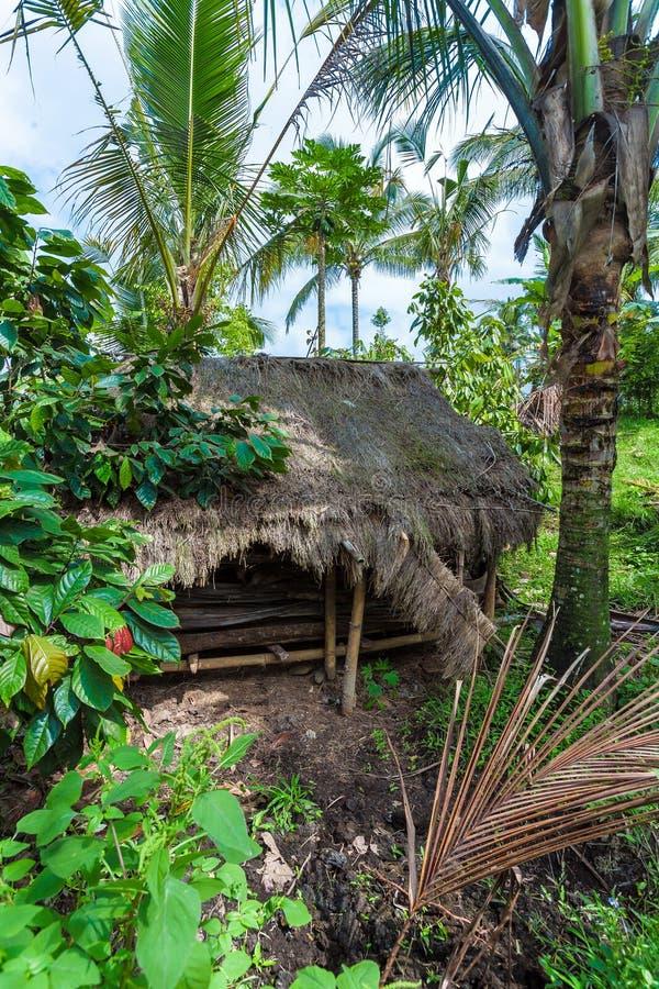 BALI wyspa INDONEZJA, SIERPIEŃ, - 25, 2008: Mała buda w Jun obrazy royalty free