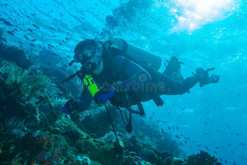 BALI wyspa INDONEZJA, SIERPIEŃ, - 20, 2008: Niewiadomy nurka dopłynięcie obrazy stock