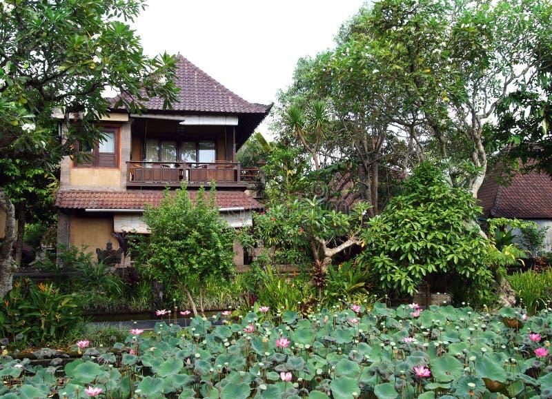 Balinees hotel met de tuin van de lotusbloemvijver royalty-vrije stock foto