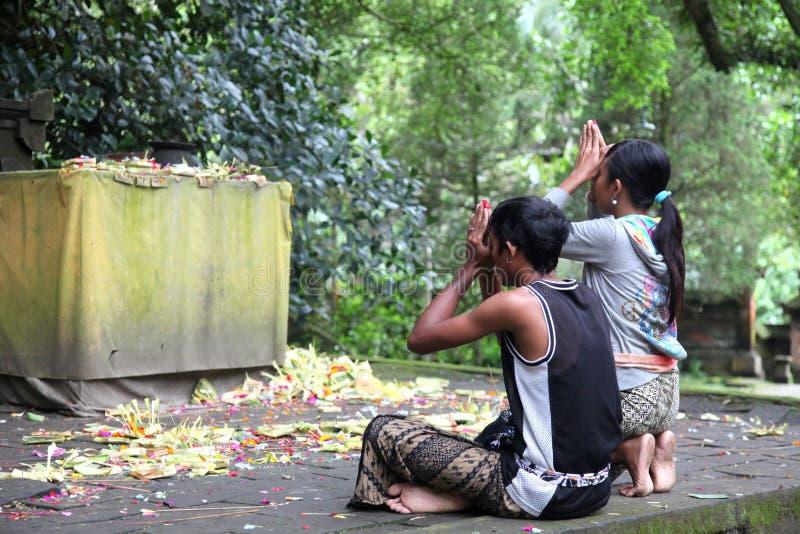 Balinese hindu couple praying royalty free stock photos