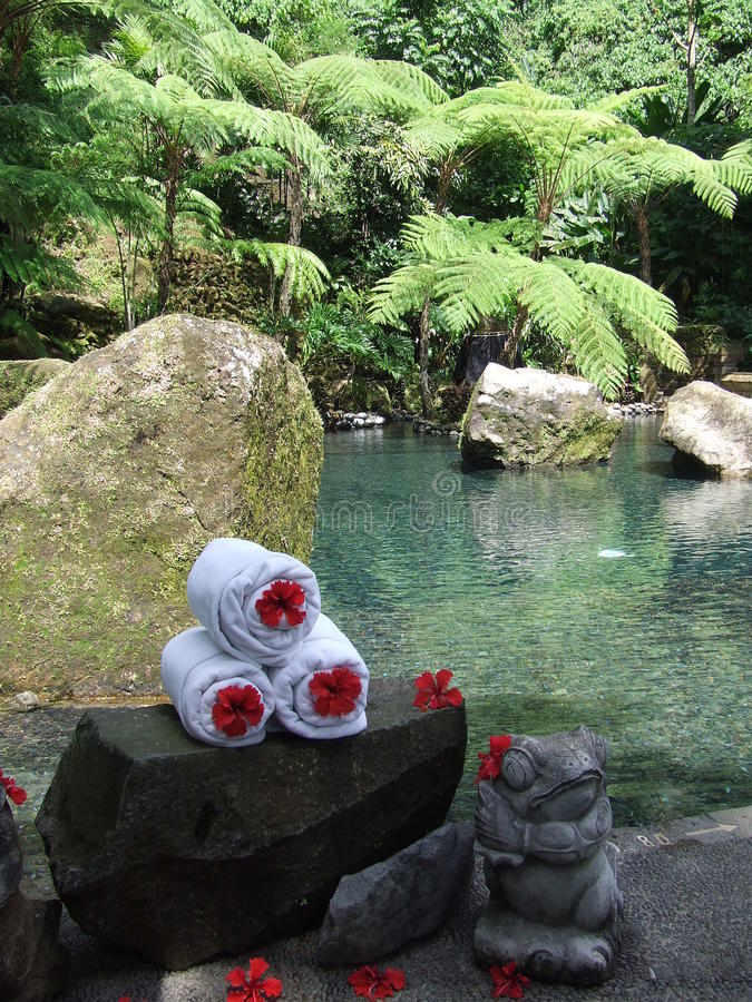 Balinese Sacred Spring. Secluded sacred spring with flower adorned towels provided for visitors royalty free stock photography
