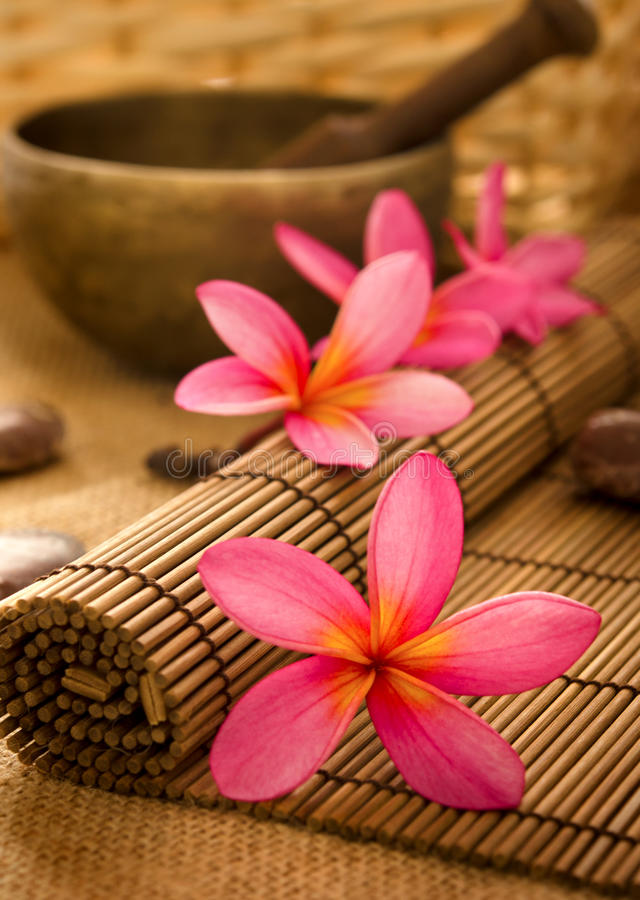 Download Balinese Spa stock photo. Image of massage, balinese - 26158756
