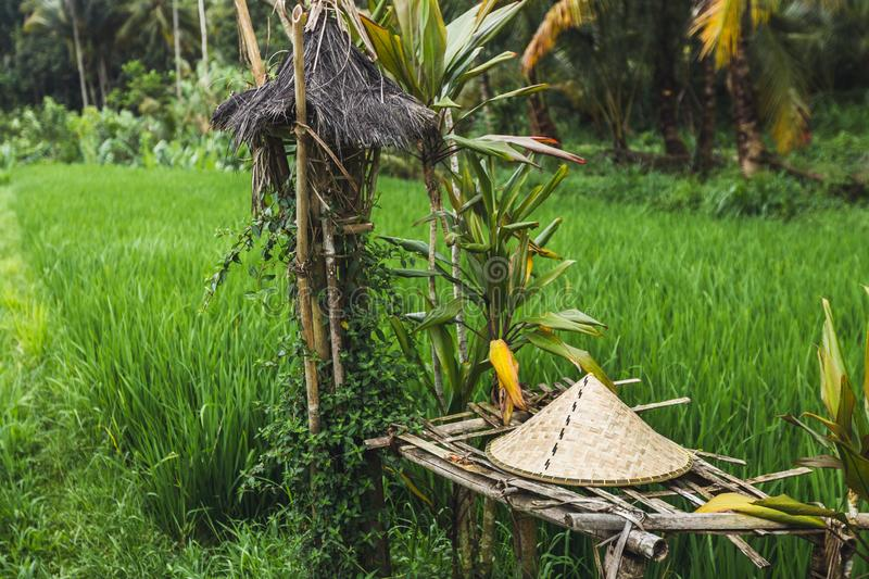 Balinese traditional straw hat on wicker bench in rice field. Ubud royalty free stock photos