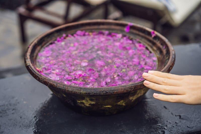 Balinesebecken mit den Blumenblumenblättern auf dem Hintergrund des Pools lizenzfreies stockfoto