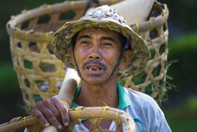 Balineserisbonde med korgar fotografering för bildbyråer